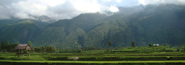 Palu-Koro Fault scarp exposing a high mountain range west of Palu valley