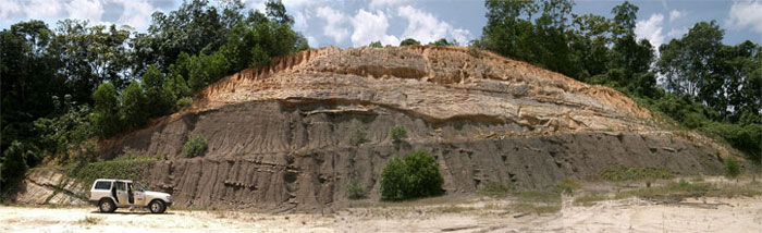 Thick sequence of sandstone channels cutting down into mudstone of the Sandakan Formation