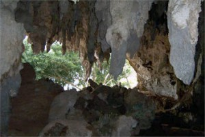 Limestone caves in the Wonosari Formation