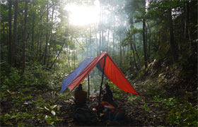 Camping in the jungle: central Seram