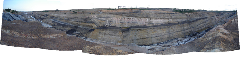 Coal bearing sediments of the Tanjung Formation in the Barito Basin, SE Kalimantan