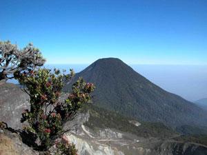 Pangrango, central Java